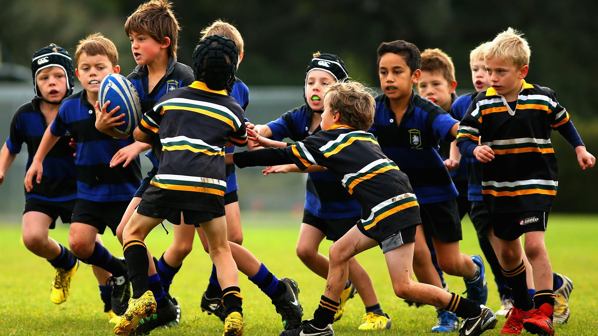 Rugby Bambini Phil Walter:Getty Images