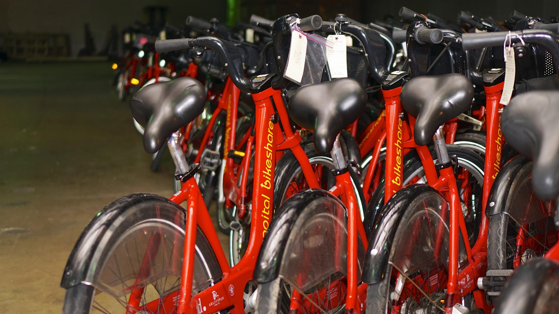 Bike sharing biciclette