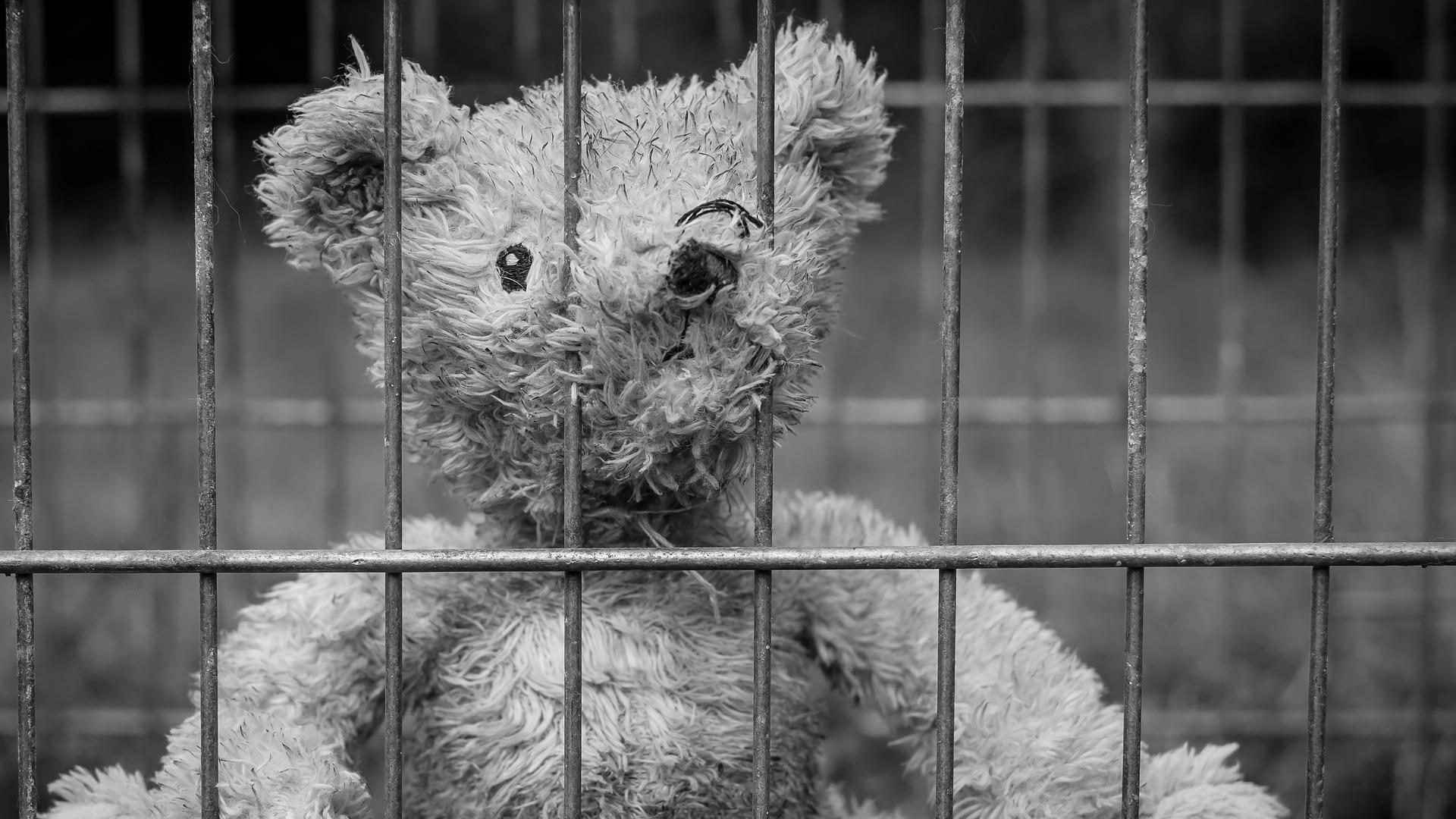 Teddy Prison Robert Pastryk From Pixabay