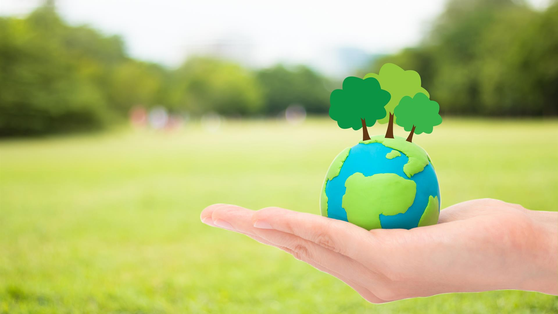 Human Hands Holding Plant Trees Globe Planet Earth Blurred Green Garden Nature Background Ecology Concept