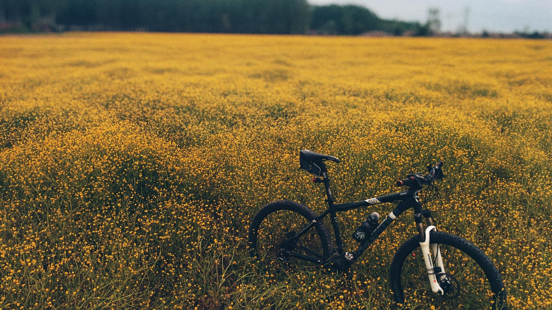 Semih Aydin 32382 Unsplash Bike