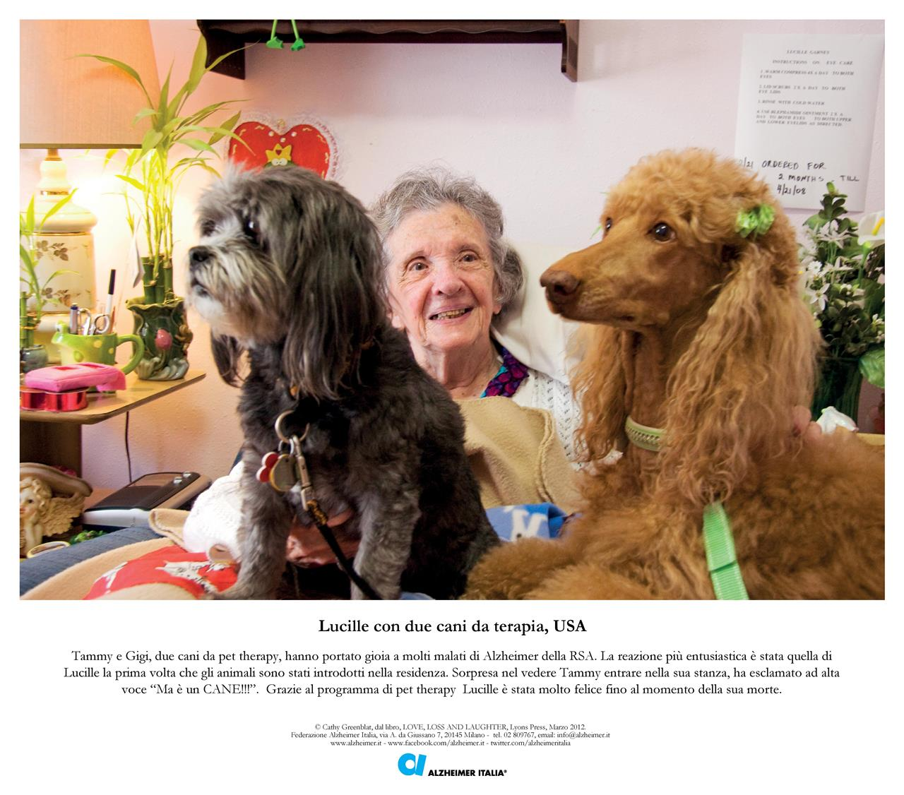 Lucille And Two Therapy Dogs Greenblat Love, Loss And Laughter