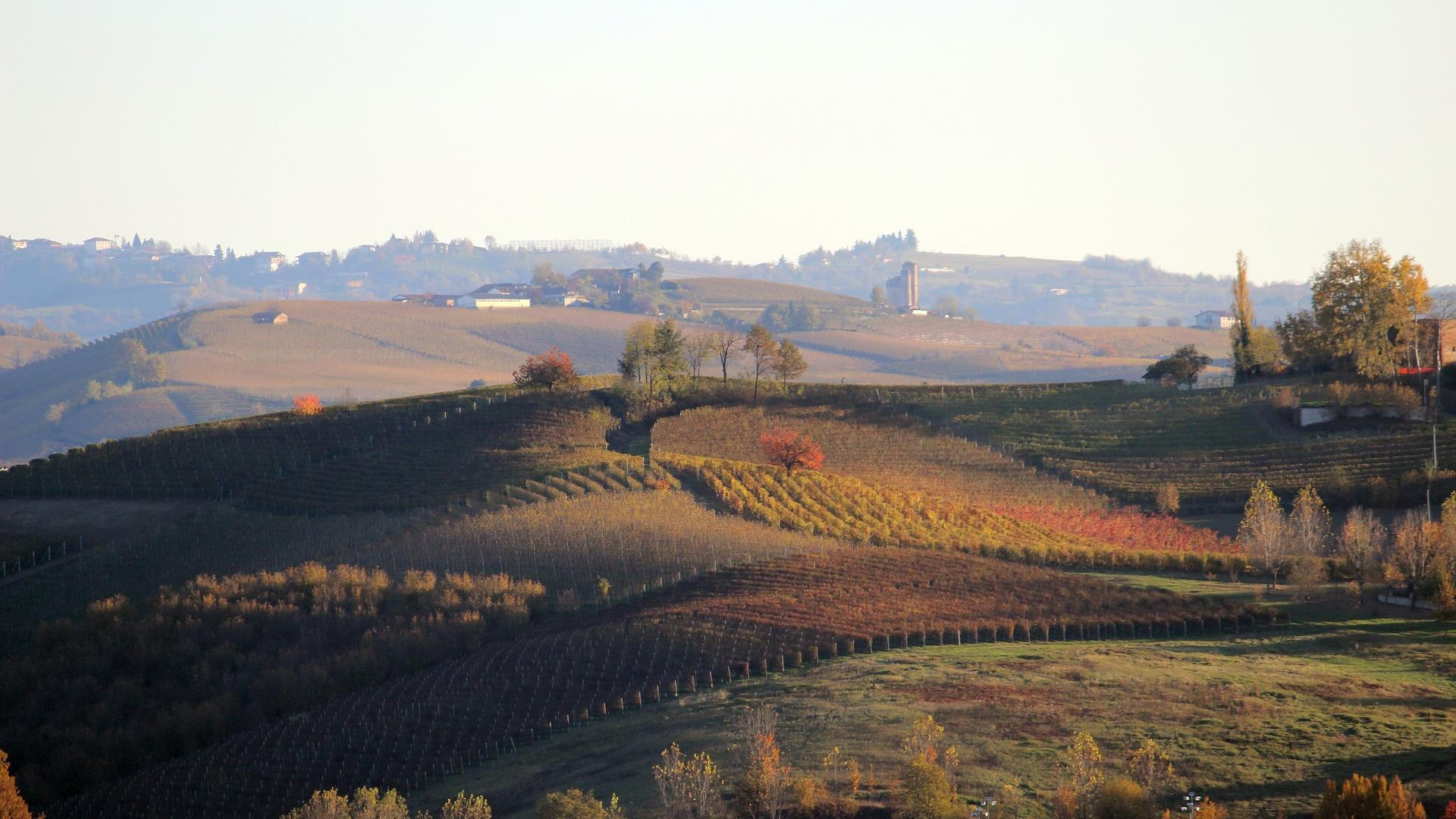 Langhe Image By Massimo Candela From Pixabay