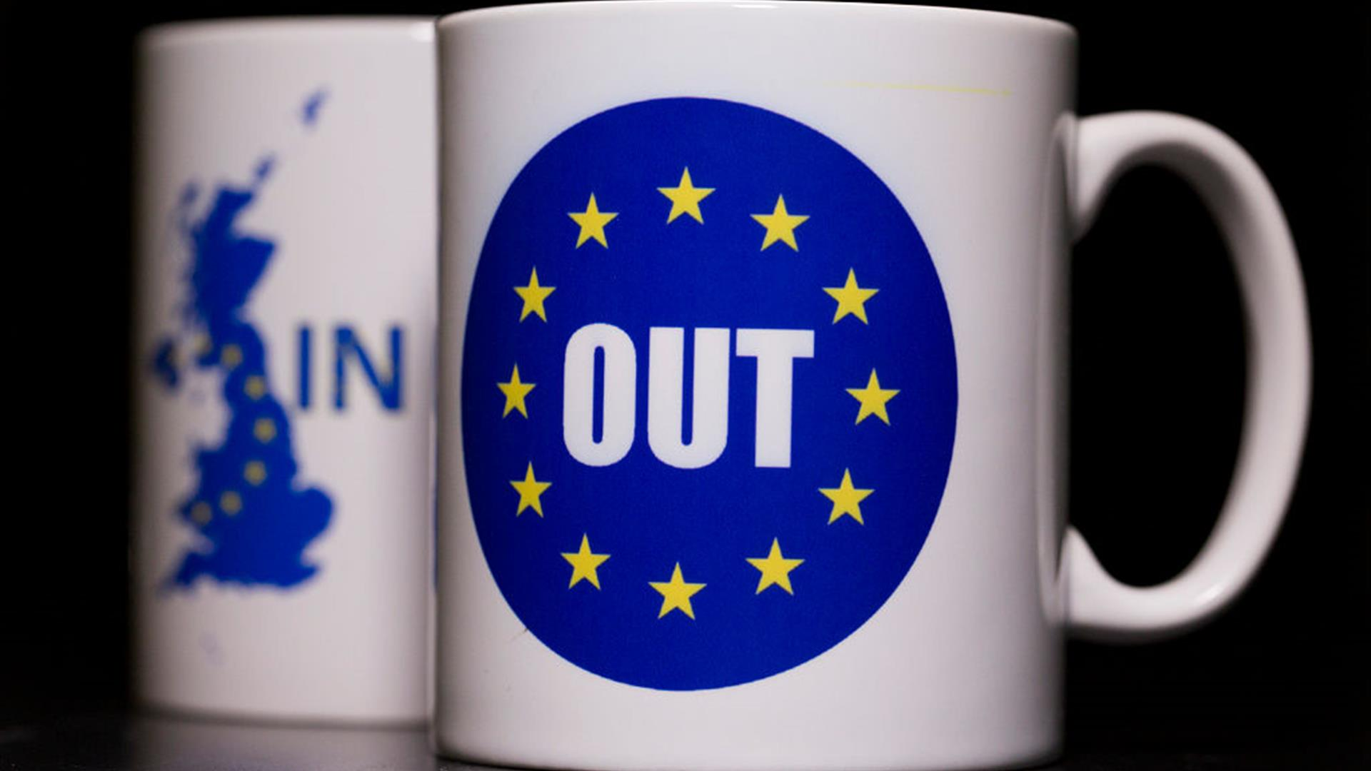 Brexit in out mug cup tazze